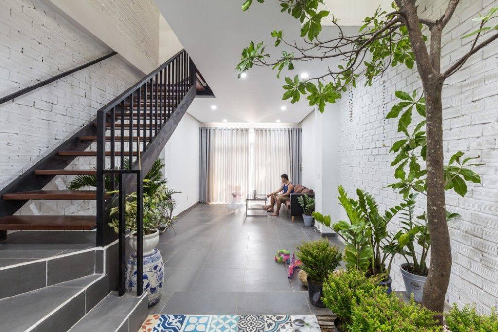 Hình: không gian xanh cho nhà